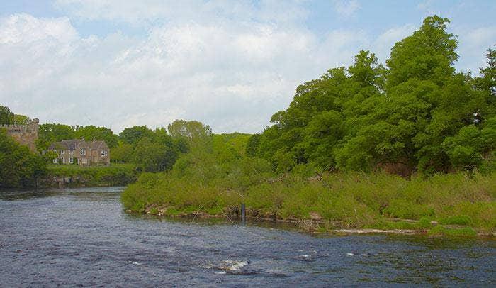 Spring Salmon Fishing on the River Tyne