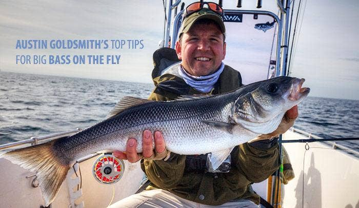 Summer Fly Fishing for Bass – Top Tips and Tactics