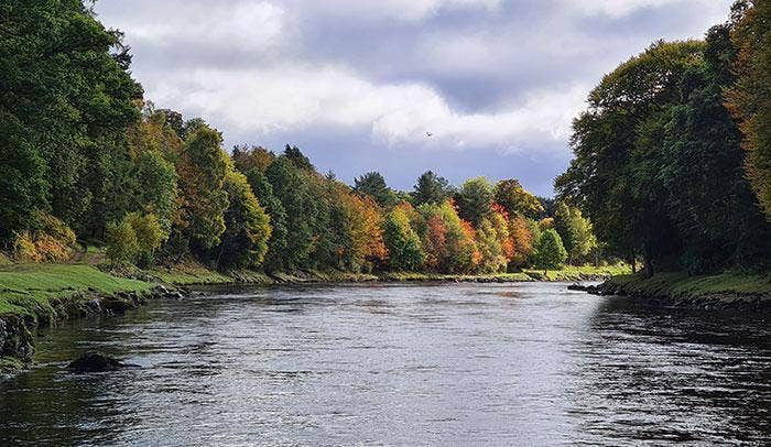 Salmon Fishing Made Simple - A Beginner's Guide