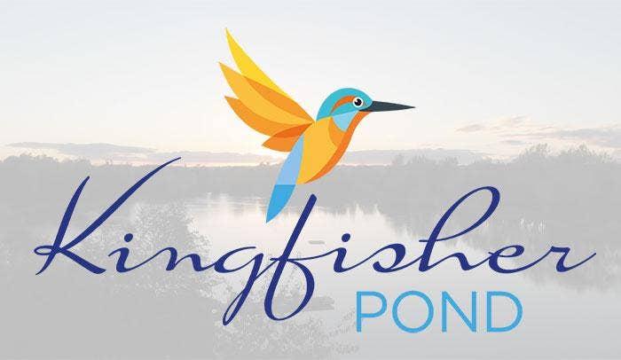 Introducing Kingfisher Pond