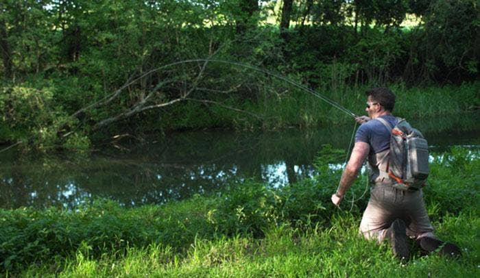 James Stokoe's Untamed Anglers – Iconic Fish