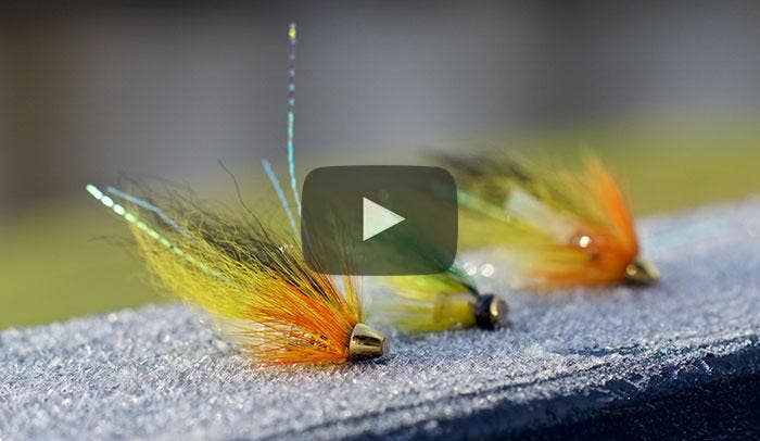 Tom's Video Guide to Spring Salmon Fishing - Part One