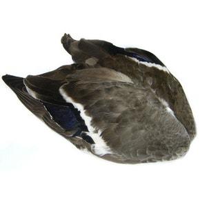 Veniards Mallard Wings