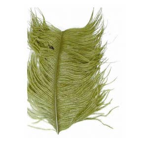 Veniards Ostrich Feathers