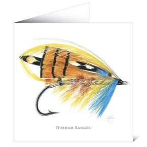 Mayfly Art Greetings Card - Durham Ranger