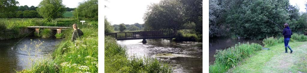 One-Day Grayling Nymphing Course on the River Test