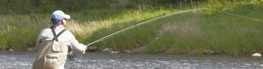 Fly Rod Buying Advice & Guides