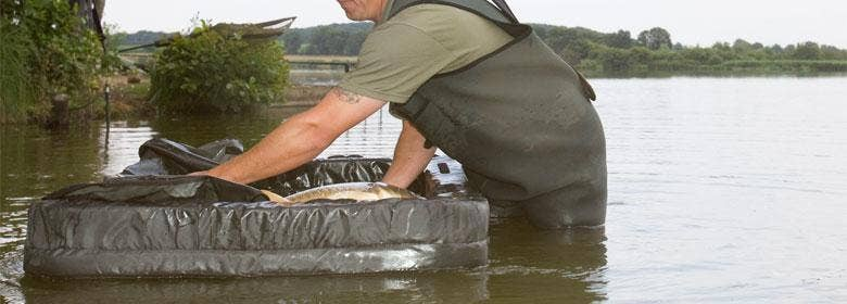 Carp & Specialist Carp Safety