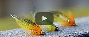 Tom's Video Guide to Spring Salmon Fishing – Part 1